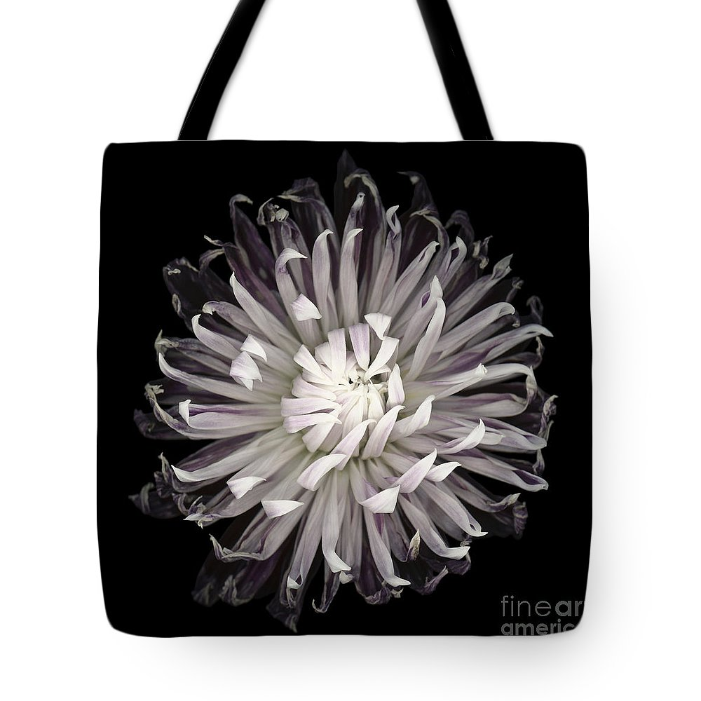 Beauty In Nature Tote Bag featuring the photograph Muted Dahlia by Oscar Gutierrez