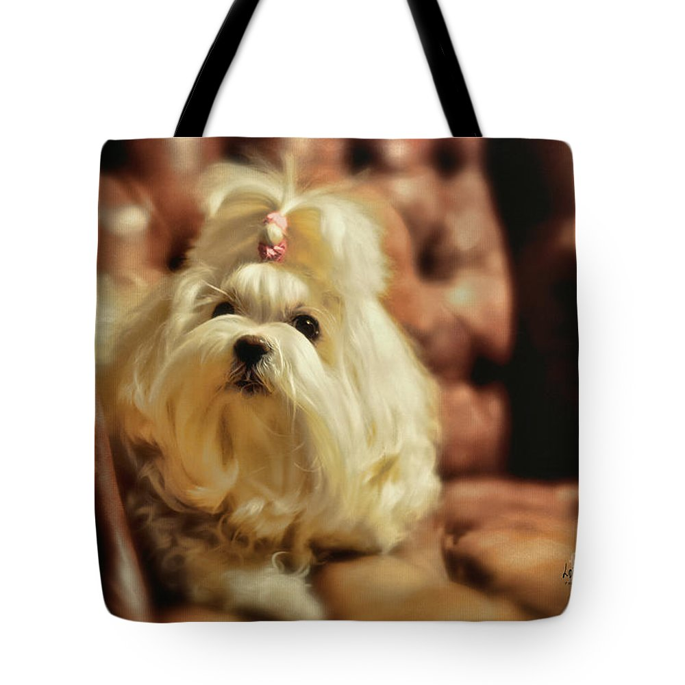 Dog Tote Bag featuring the photograph My Chair by Lois Bryan
