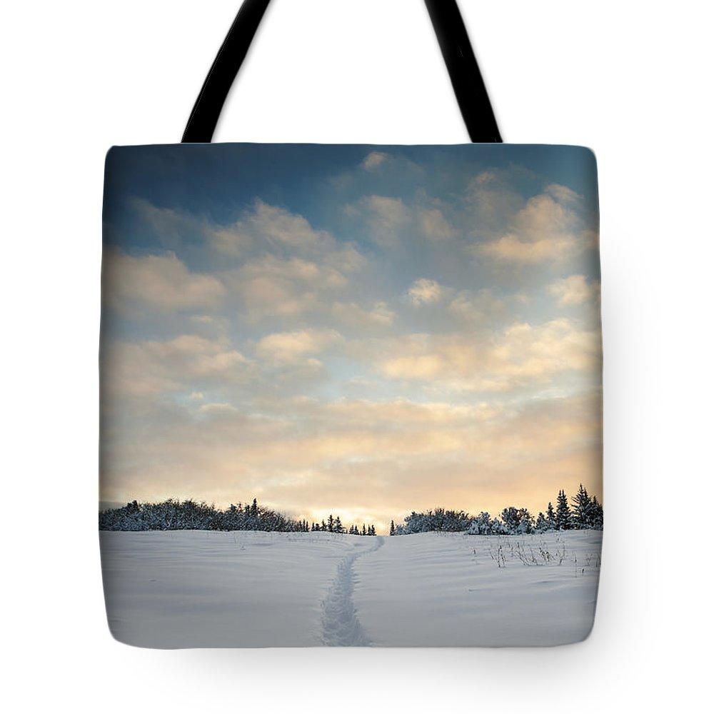 Alaska Tote Bag featuring the photograph My Chosen Path by Michele Cornelius