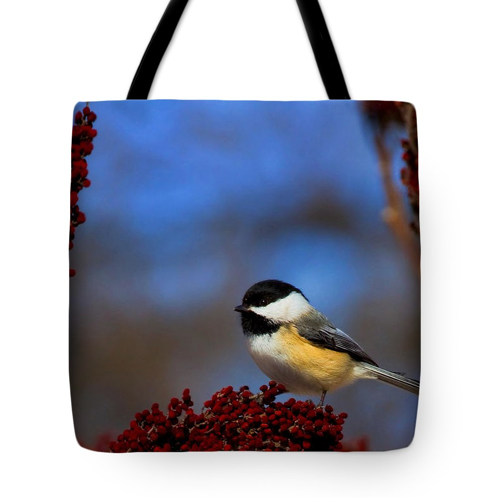 Bird Tote Bag featuring the photograph My Little Chicadee by John Absher