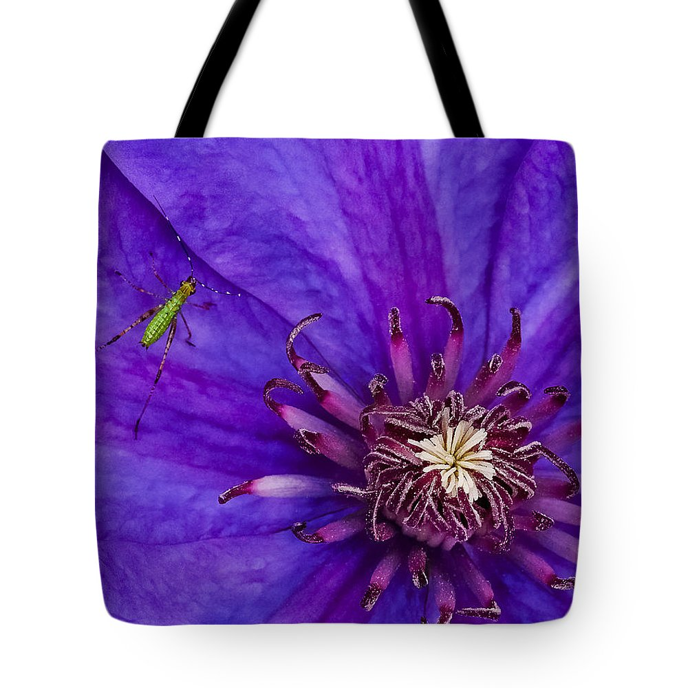 Clematis Tote Bag featuring the photograph My Old Clematis Home by Kristi Swift