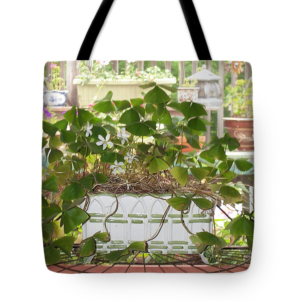 house Plant Tote Bag featuring the photograph My Shamrocks by Barbara McDevitt