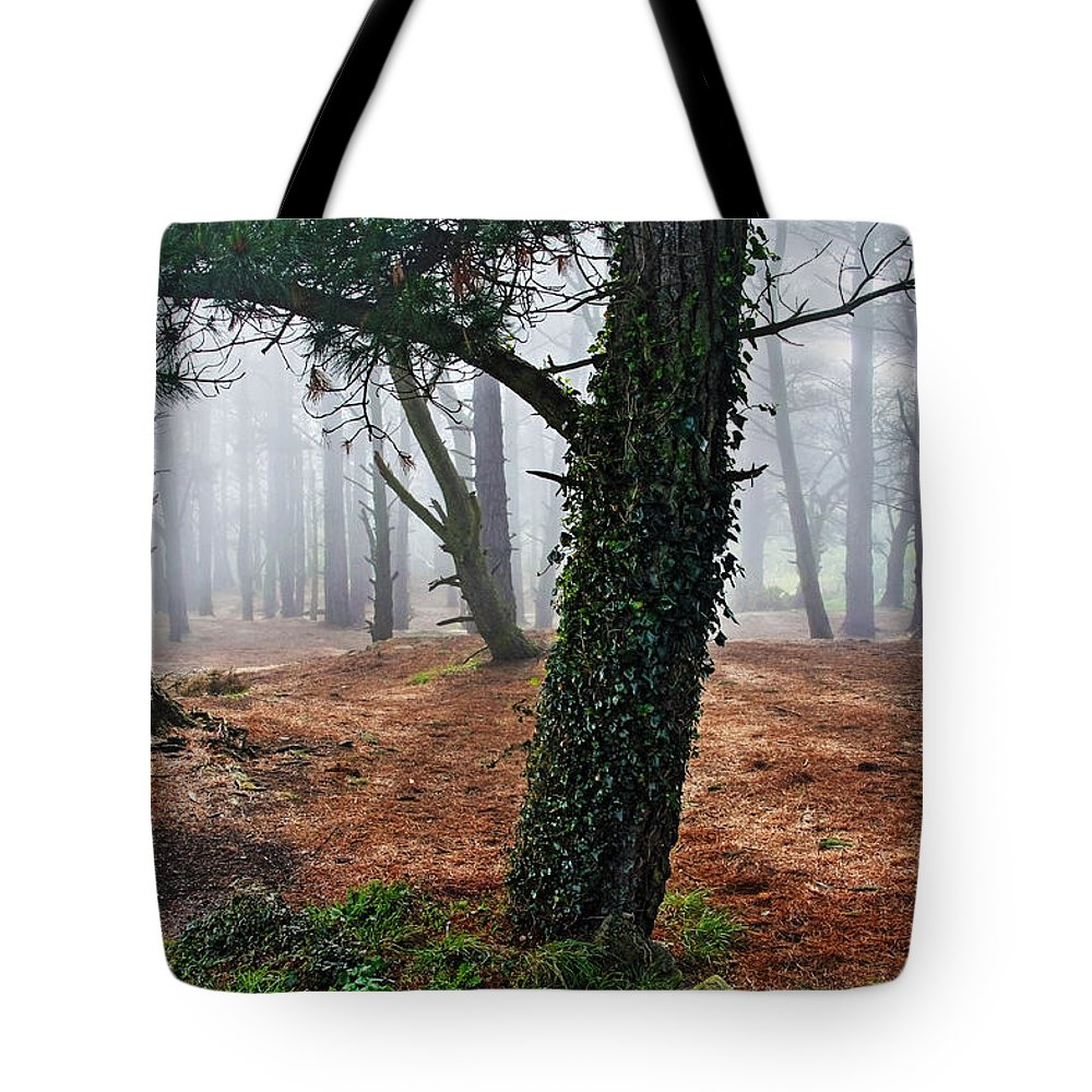 Ireland Tote Bag featuring the photograph Mysterious Forest by Aidan Moran
