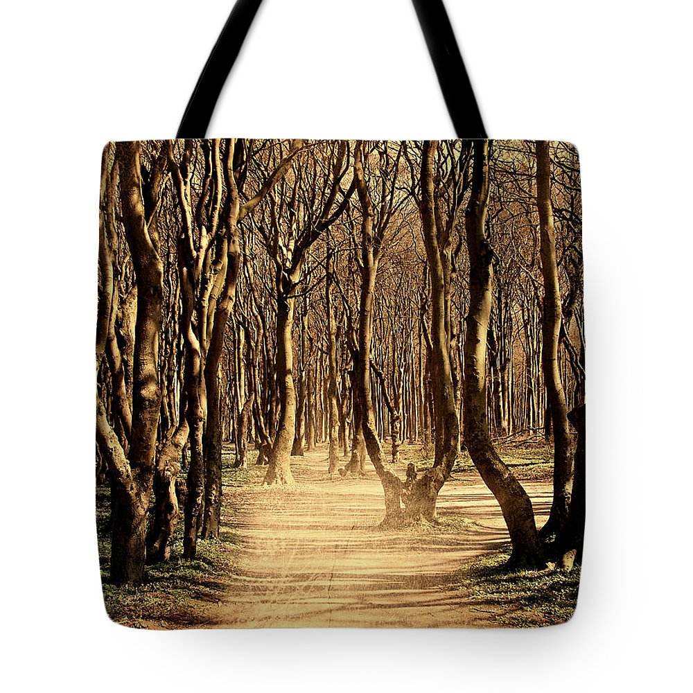 Forest Tote Bag featuring the photograph Mysterious Forest by Heike Hultsch
