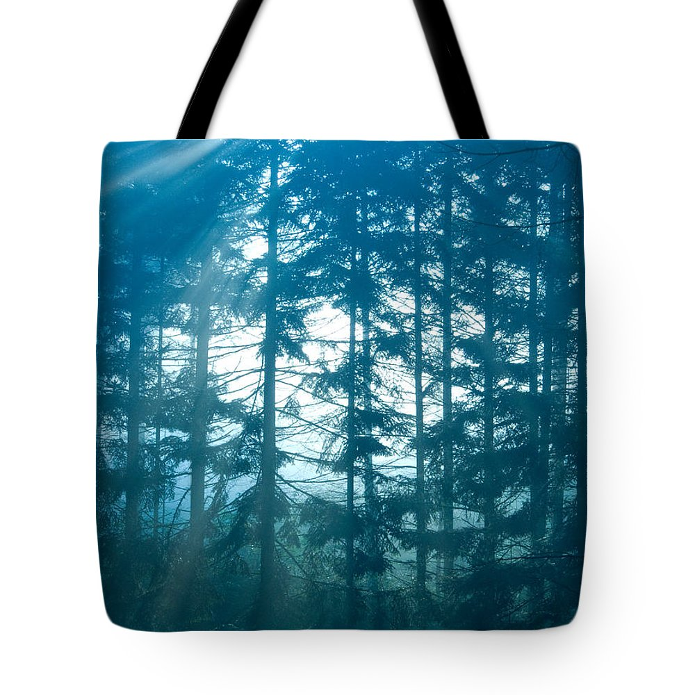 Nature Tote Bag featuring the photograph Mystic Light by Daniel Csoka