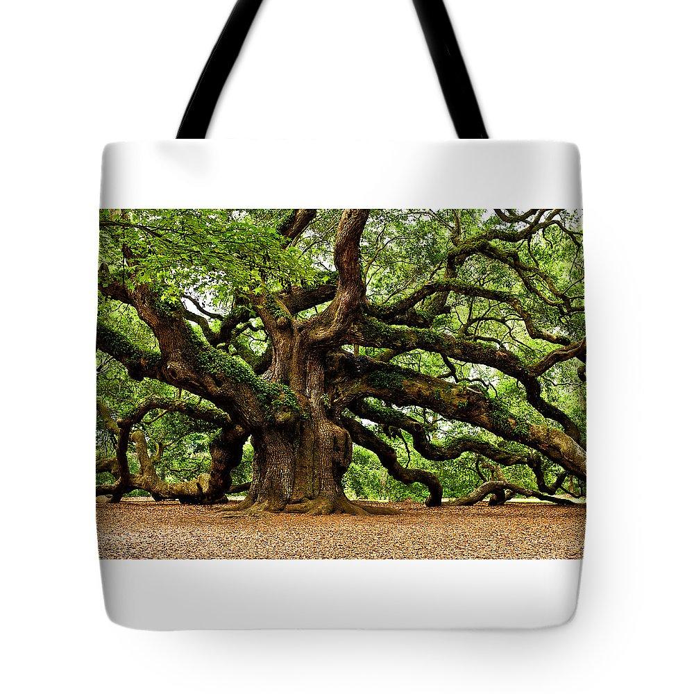 Charleston Tote Bag featuring the photograph Mystical Angel Oak Tree by Louis Dallara
