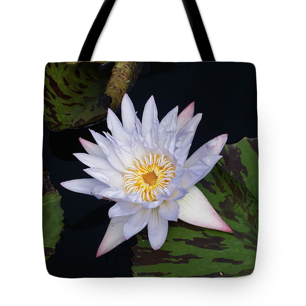 White Tote Bag featuring the photograph Mystical White... by Rob Luzier