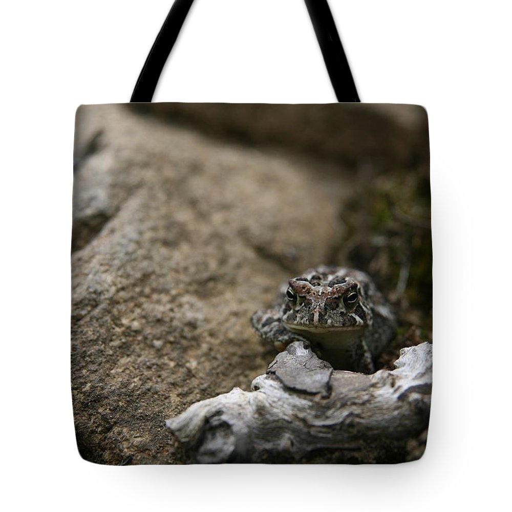 Nature's Expressions Tote Bag featuring the photograph Natural Expression Of A Fowler Toad by Neal Eslinger