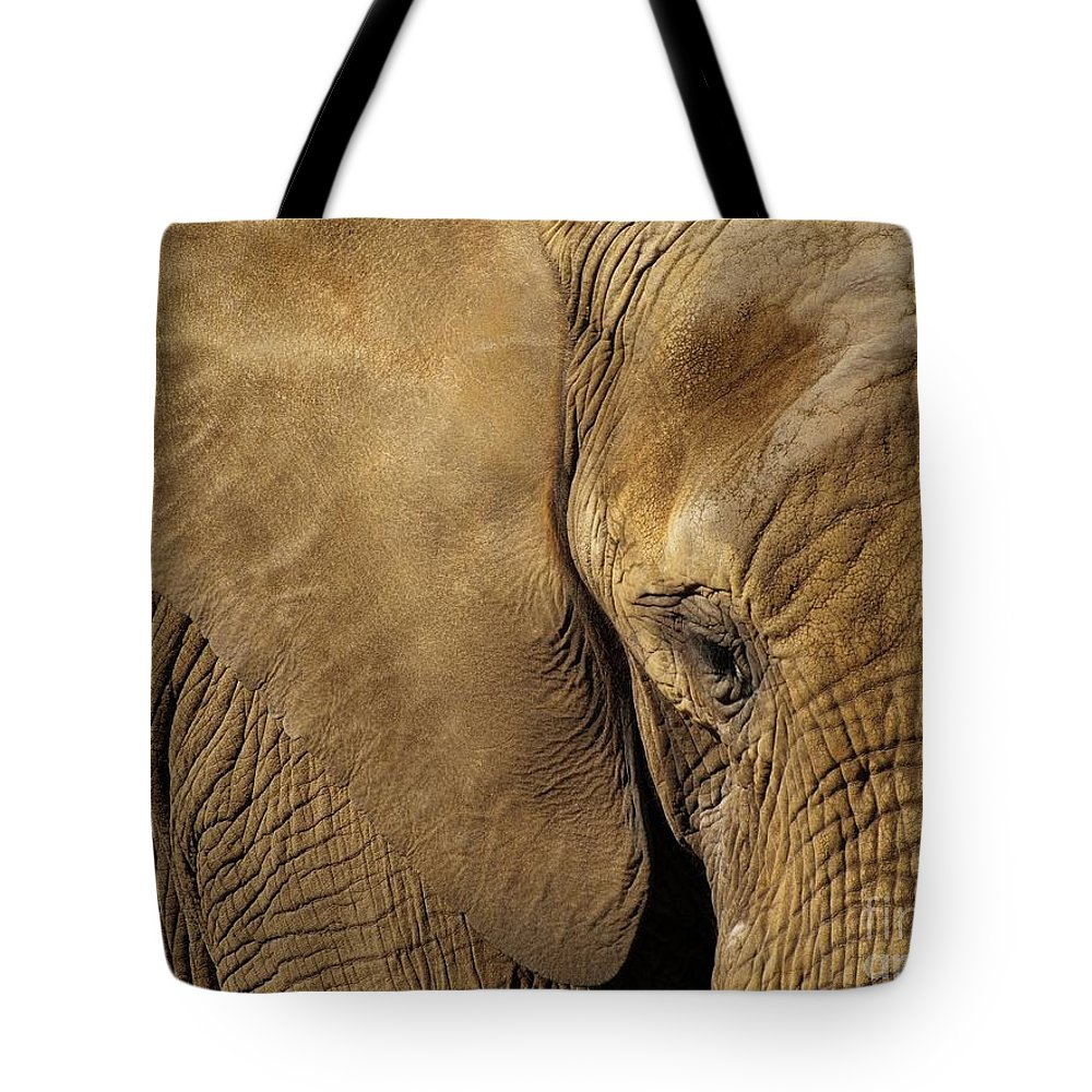 Animal Tote Bag featuring the photograph Natural Sepia by Brothers Beerens
