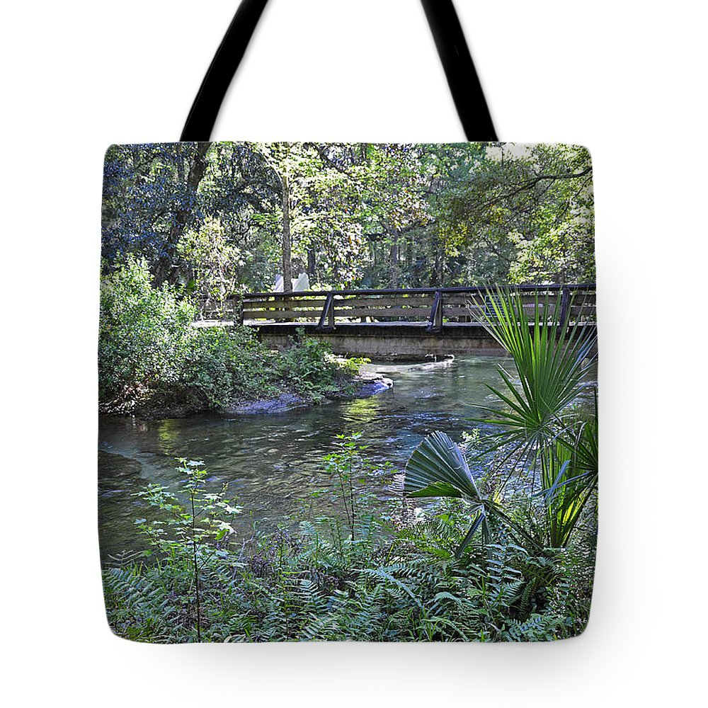 Landscapes Tote Bag featuring the photograph Natural Springs by Deborah Good