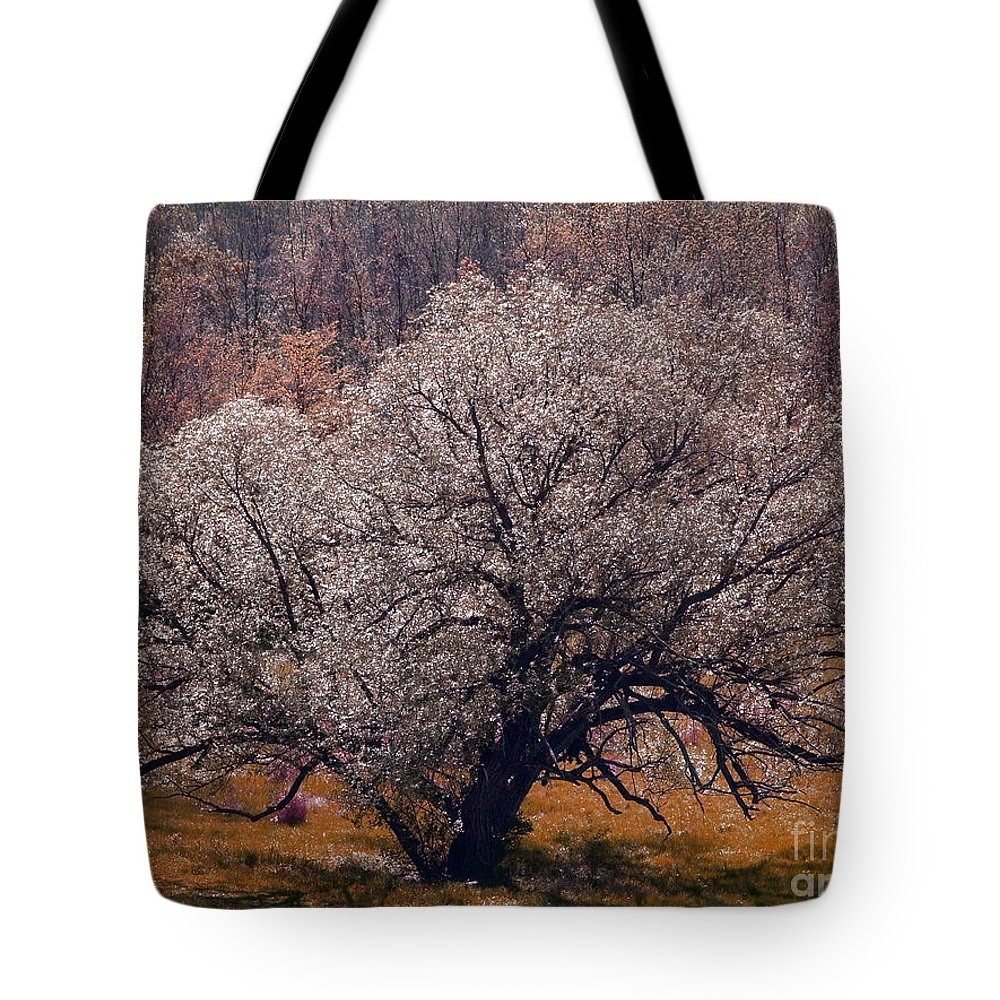 Tree Tote Bag featuring the photograph Naturally by Melissa McDole