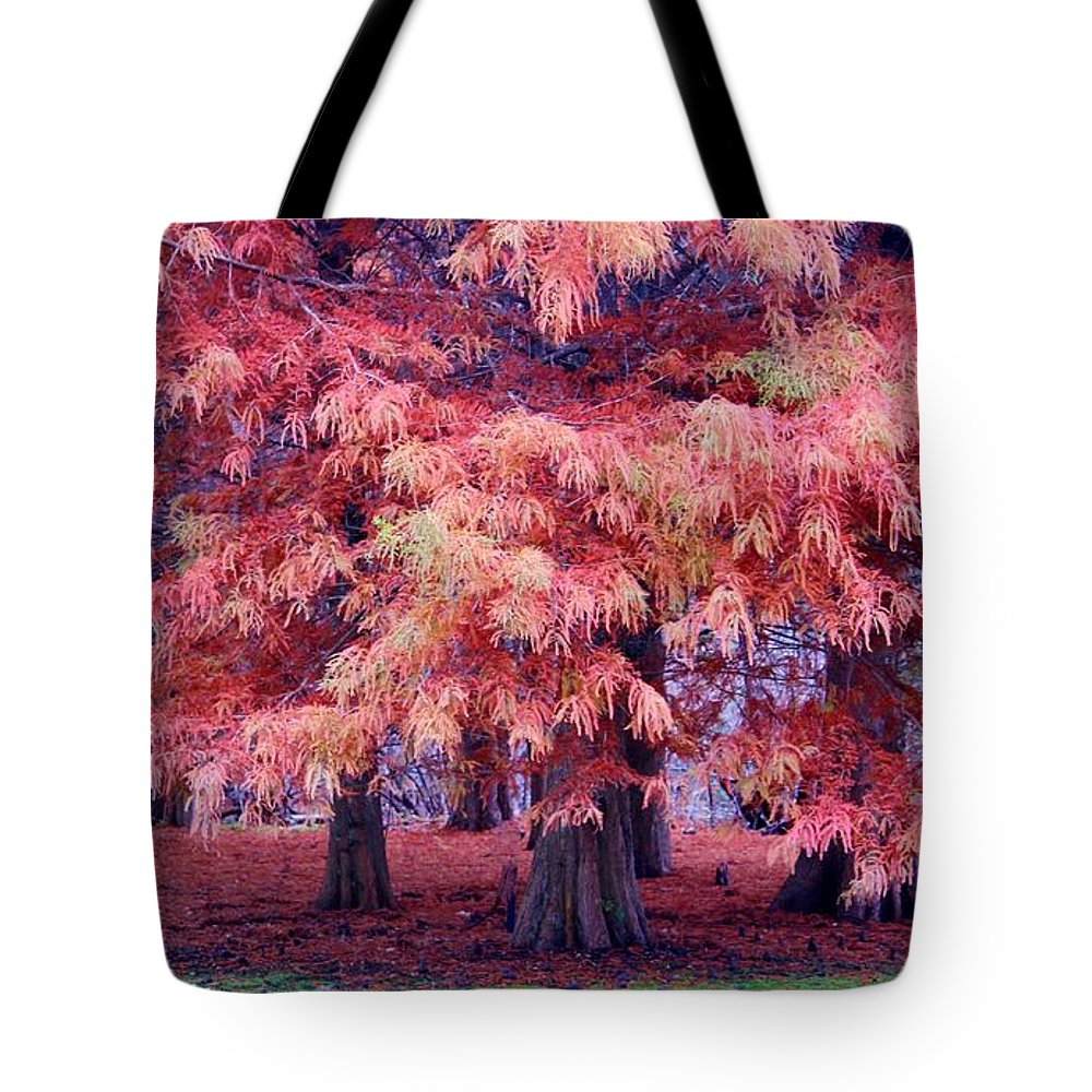 Fall Tote Bag featuring the photograph Nature Colors by Cynthia Guinn