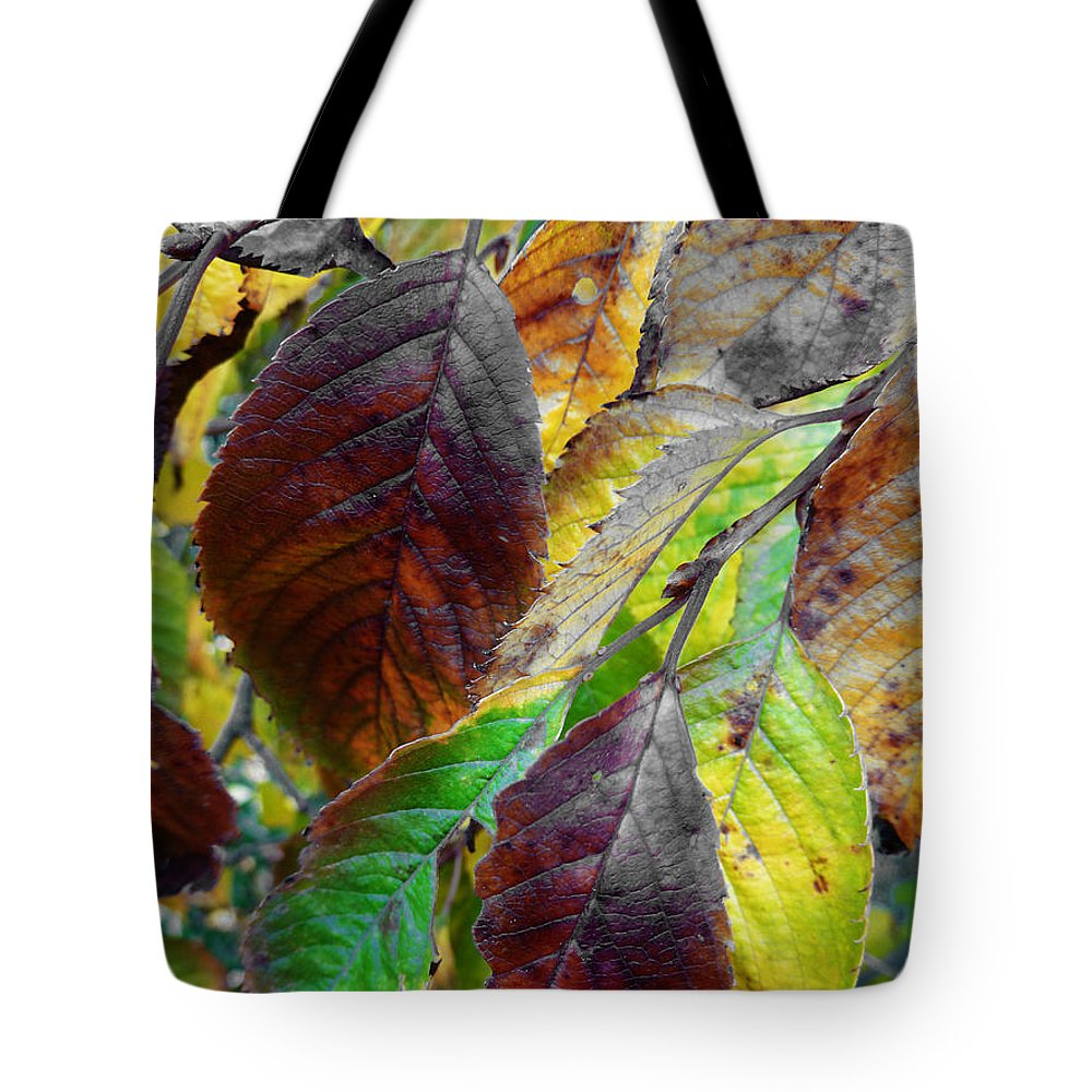 Faded Tote Bag featuring the photograph Nature Has Been Recycling For Ages by Steve Taylor