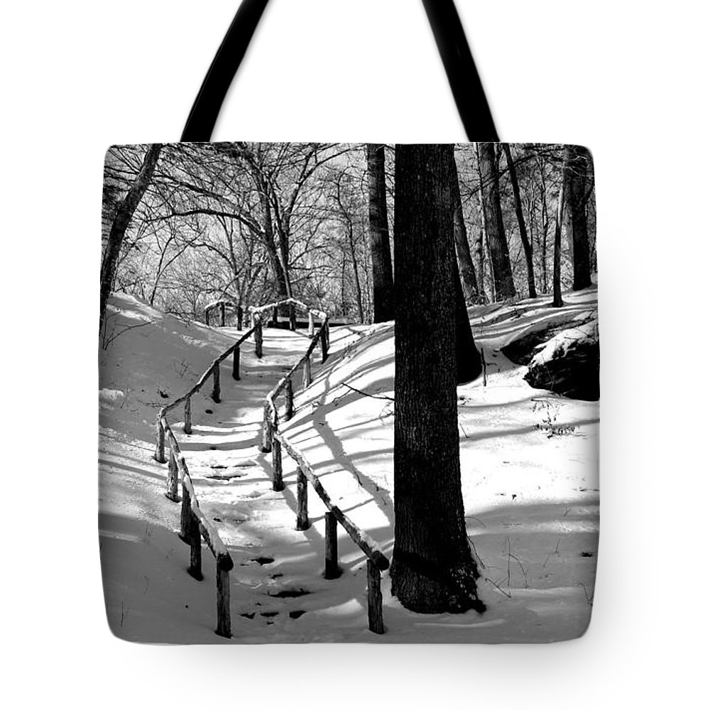 Landscape - B&w - Nature Trail On A Sunny Winter Day In Gillette Castle State Park Ct. Tote Bag featuring the photograph Nature Trail by Ursula Coccomo