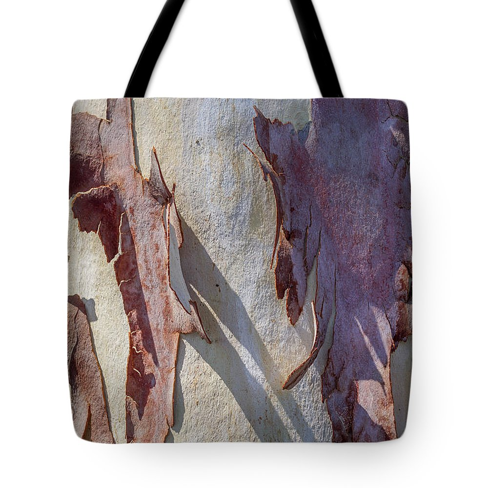 Sycamore Tree Tote Bag featuring the photograph Natures Abstract by Ernie Echols