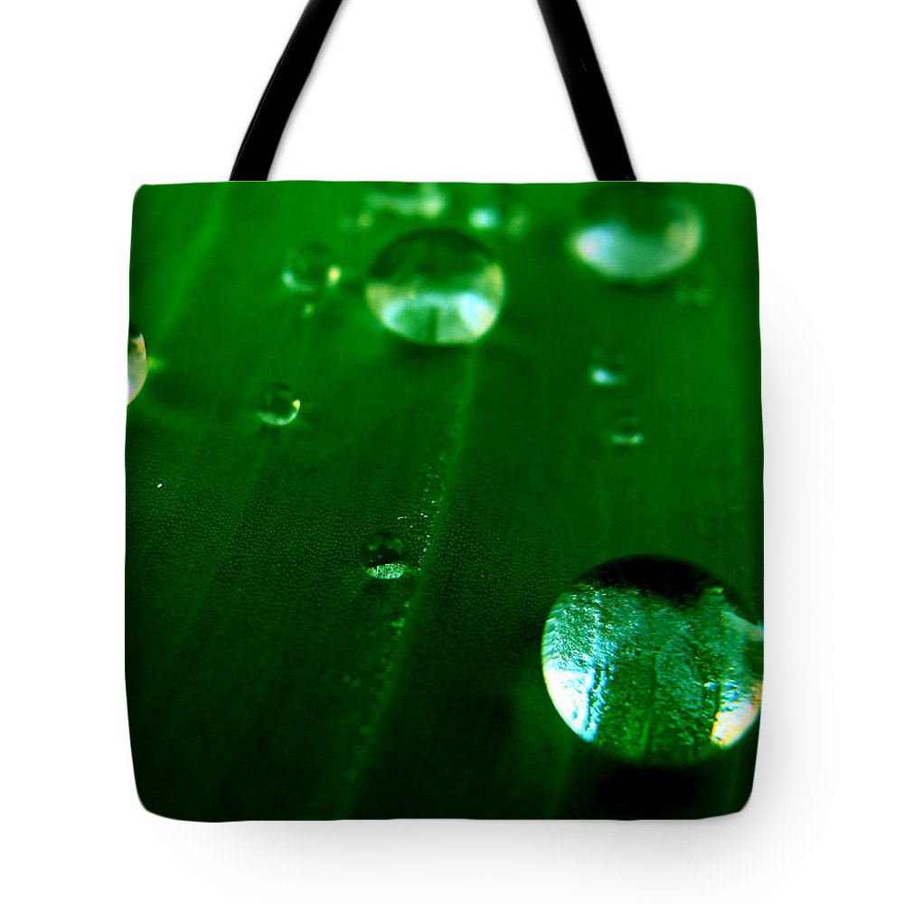 Leaf Tote Bag featuring the photograph Nature's Bowling by Bliss Of Art