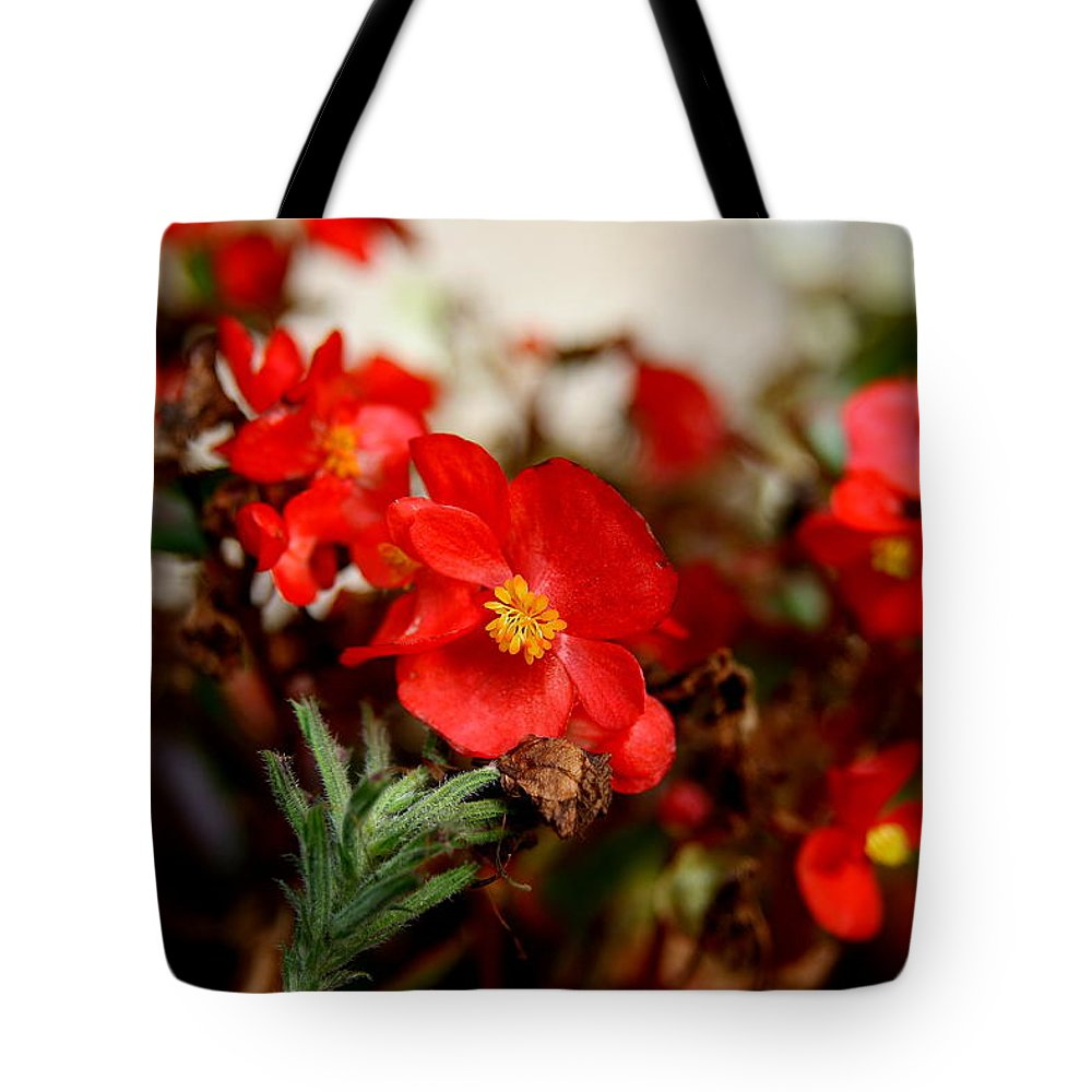 Red Flower Tote Bag featuring the photograph Nature's Fire by Neal Eslinger