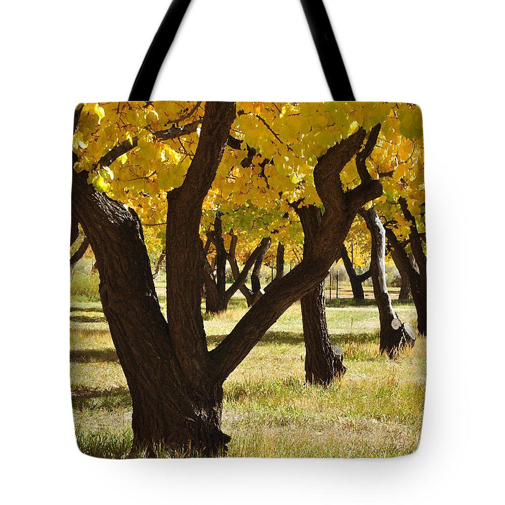 Canvas Prints Tote Bag featuring the photograph Natures Gold by Wendy Elliott