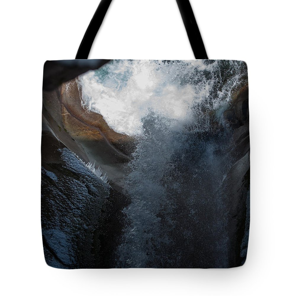 Christine Falls Tote Bag featuring the photograph Natures Super Slide by Tikvah's Hope