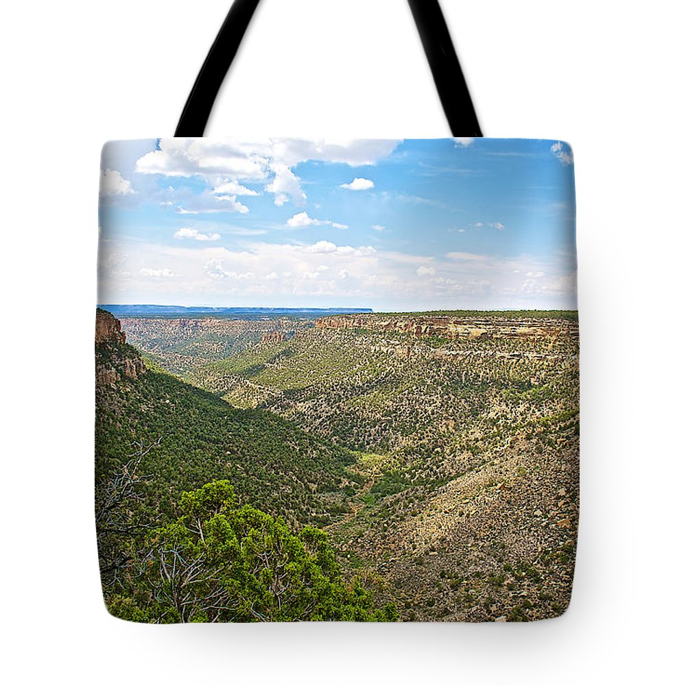 Navajo Canyon Overlook On Chapin Mesa Top Loop Road In Mesa Verde National Park Tote Bag featuring the photograph Navajo Canyon Overlook On Chapin Mesa Top Loop Road In Mesa Verde National Park-colorado by Ruth Hager