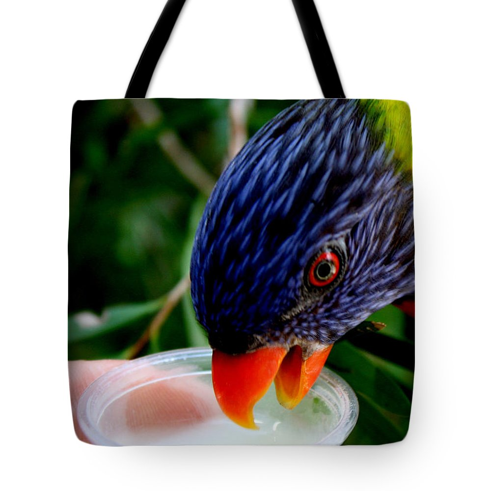 Tampa Bay Tote Bag featuring the photograph Nectar by David Nicholls