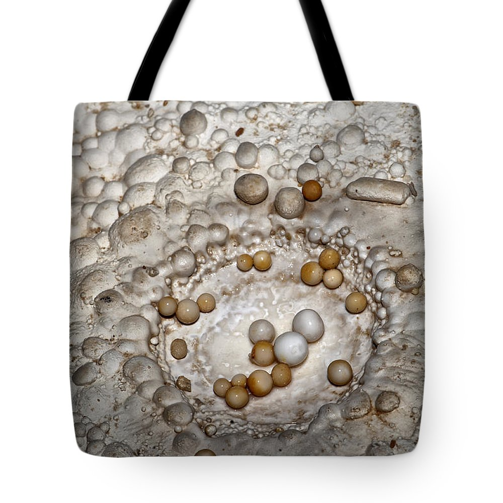 Awe Tote Bag featuring the photograph Nest Of Cave Pearls by Melany Sarafis
