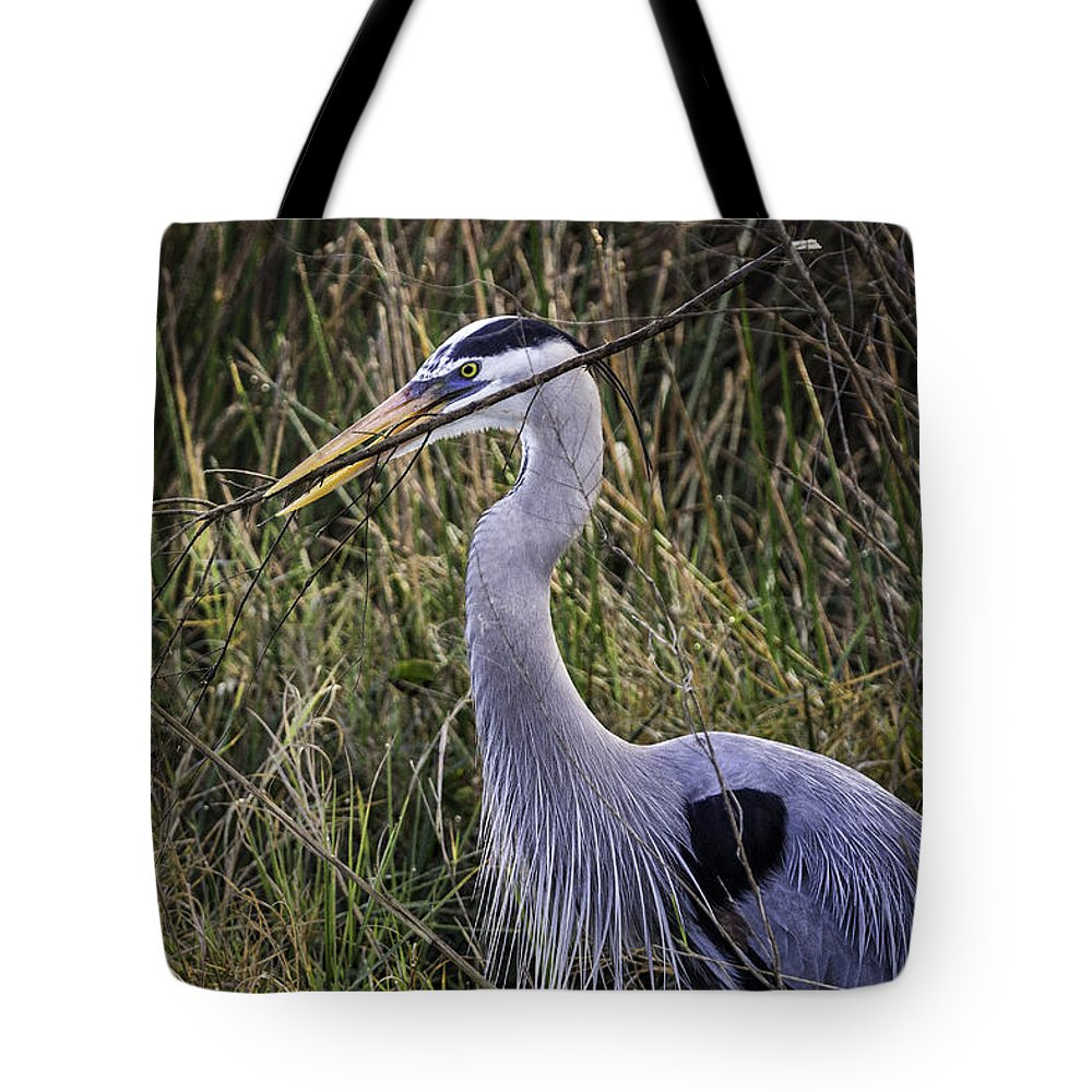 Bird Tote Bag featuring the photograph Nesting by Fran Gallogly