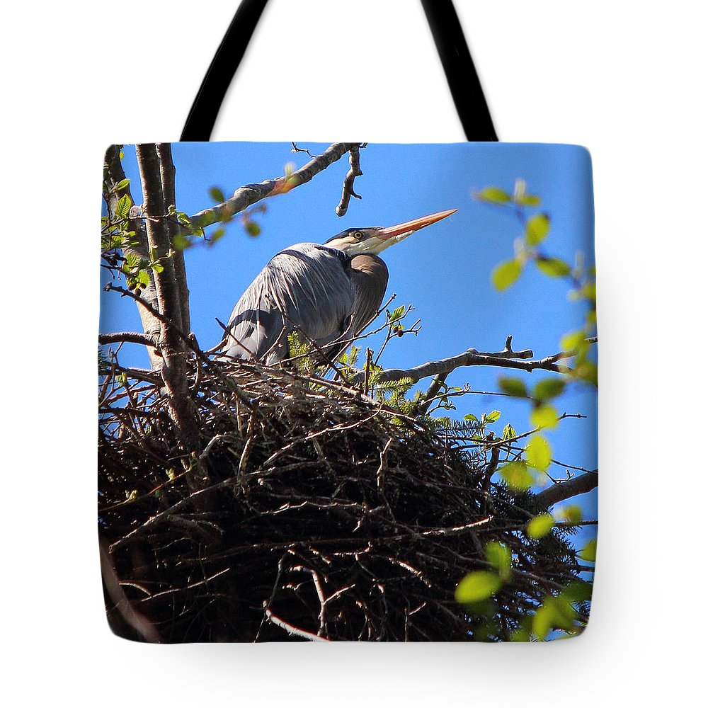 Great Blue Heron Tote Bag featuring the photograph Nesting Great Blue Heron by Randy Hall