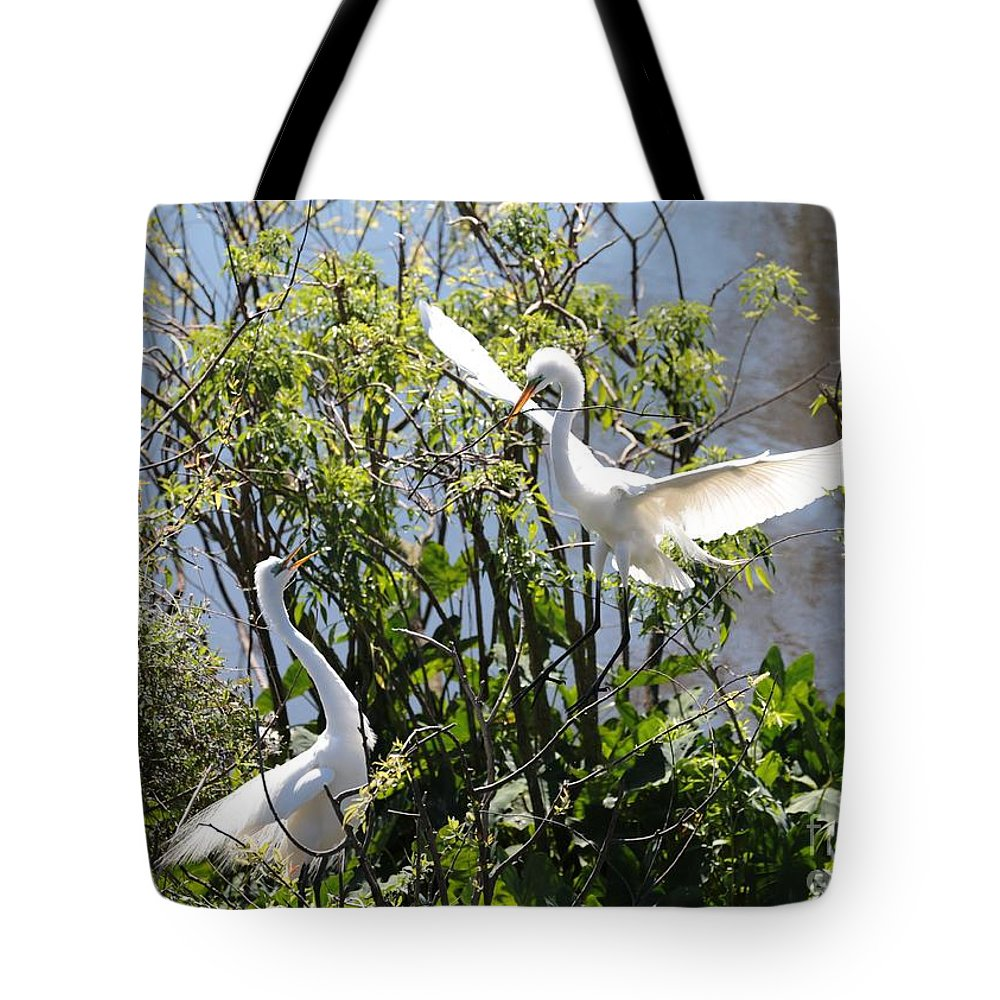 Nesting Tote Bag featuring the photograph Nesting Great Egrets by Carol Groenen
