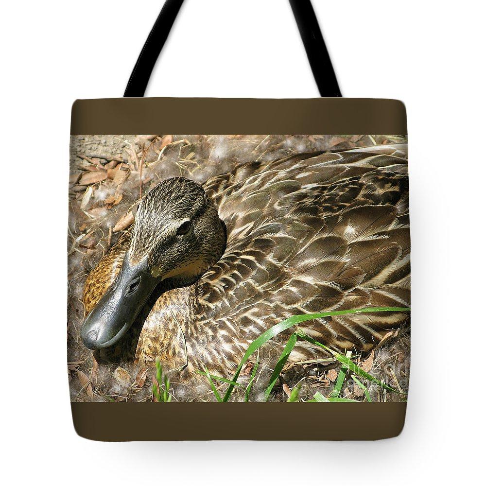 Mallard Tote Bag featuring the photograph Nesting Mallard by Ann Horn