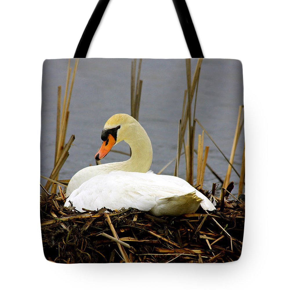 Swans Art Prints Tote Bag featuring the photograph Nesting Swan by Marie Jamieson