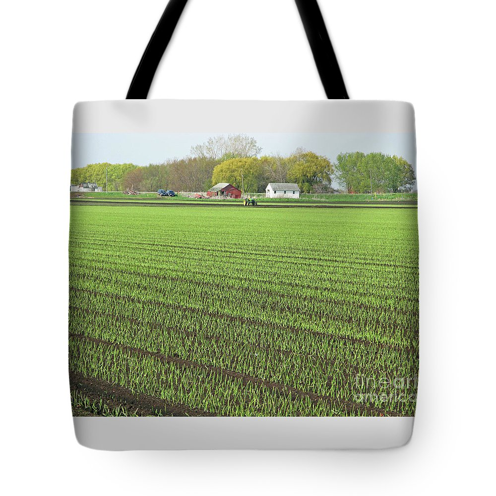 Farm Tote Bag featuring the photograph New Crop by Ann Horn