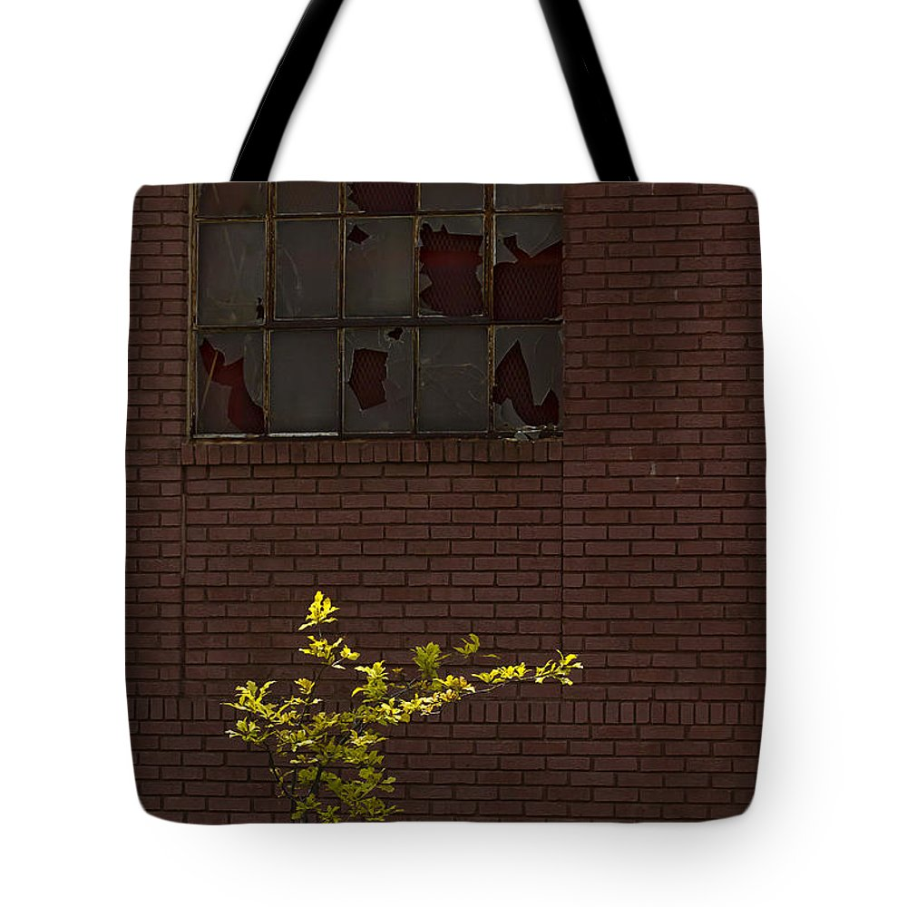 Tree Tote Bag featuring the photograph New Juxtaposed To The Old  #1196 by J L Woody Wooden