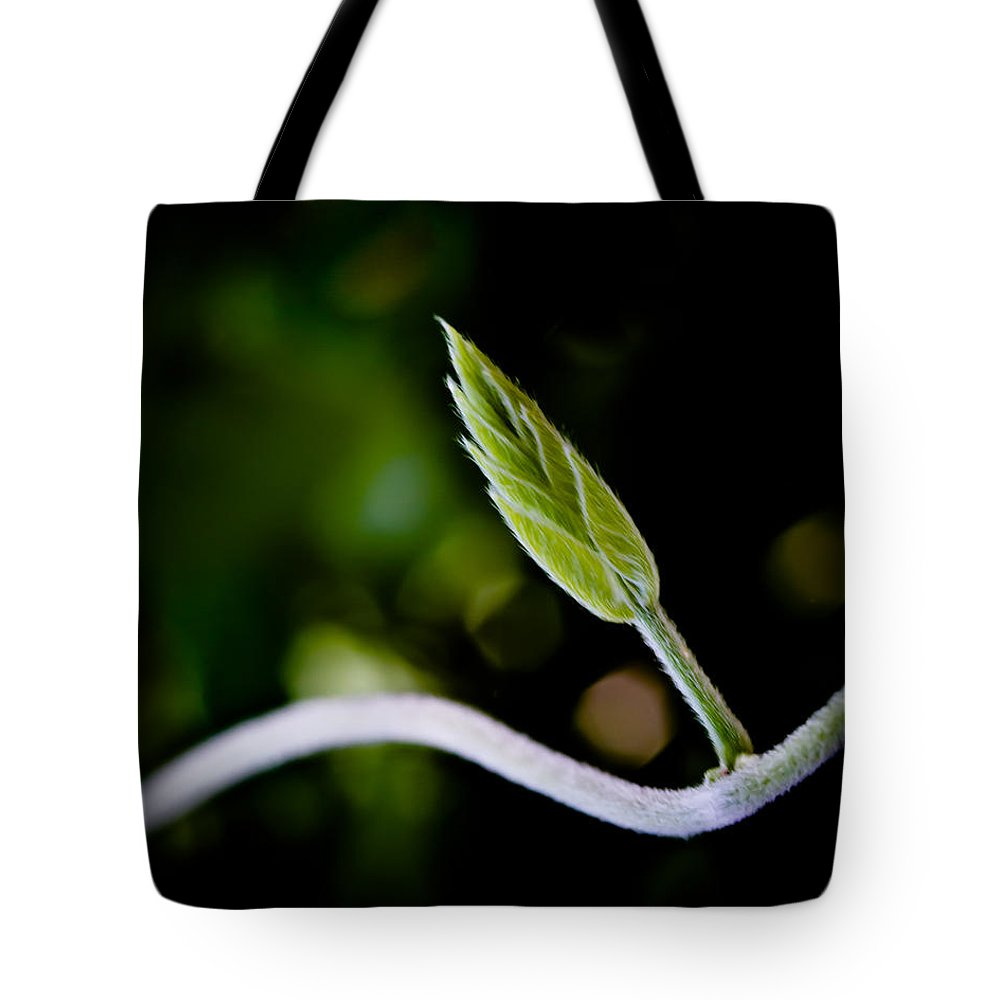 Flower Tote Bag featuring the photograph New Life by Bob Orsillo