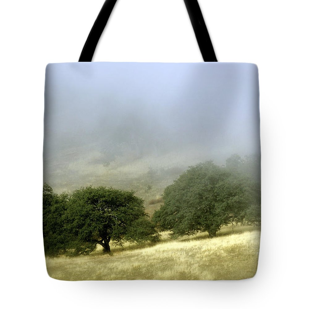 Nature Tote Bag featuring the photograph Mist In The Californian Valley by Toula Mavridou-Messer