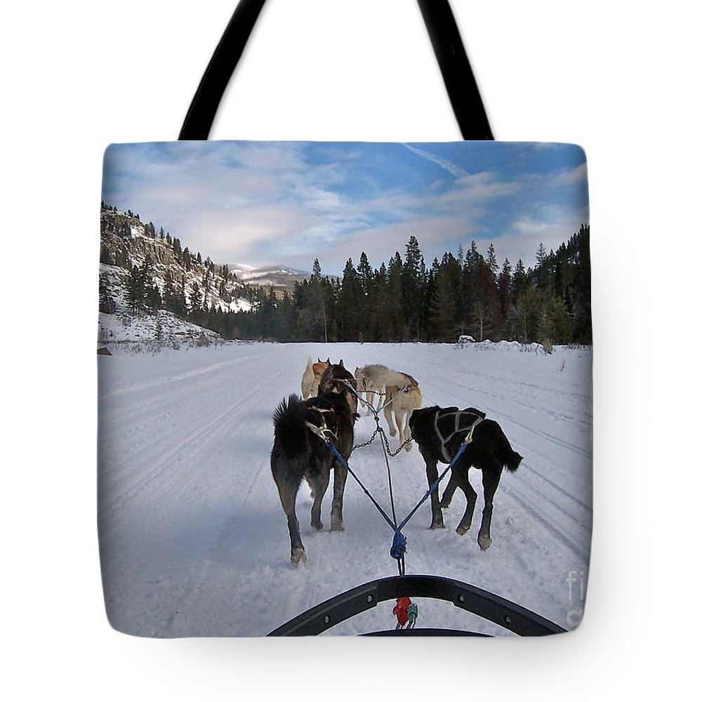 Dog Tote Bag featuring the photograph Riding Through The Colorado Snow On A Husky Pulled Sled by Toula Mavridou-Messer