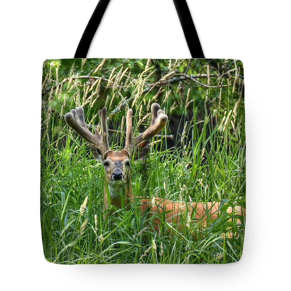 Rack Tote Bag featuring the photograph Nice Rack In Velvet by M Dale
