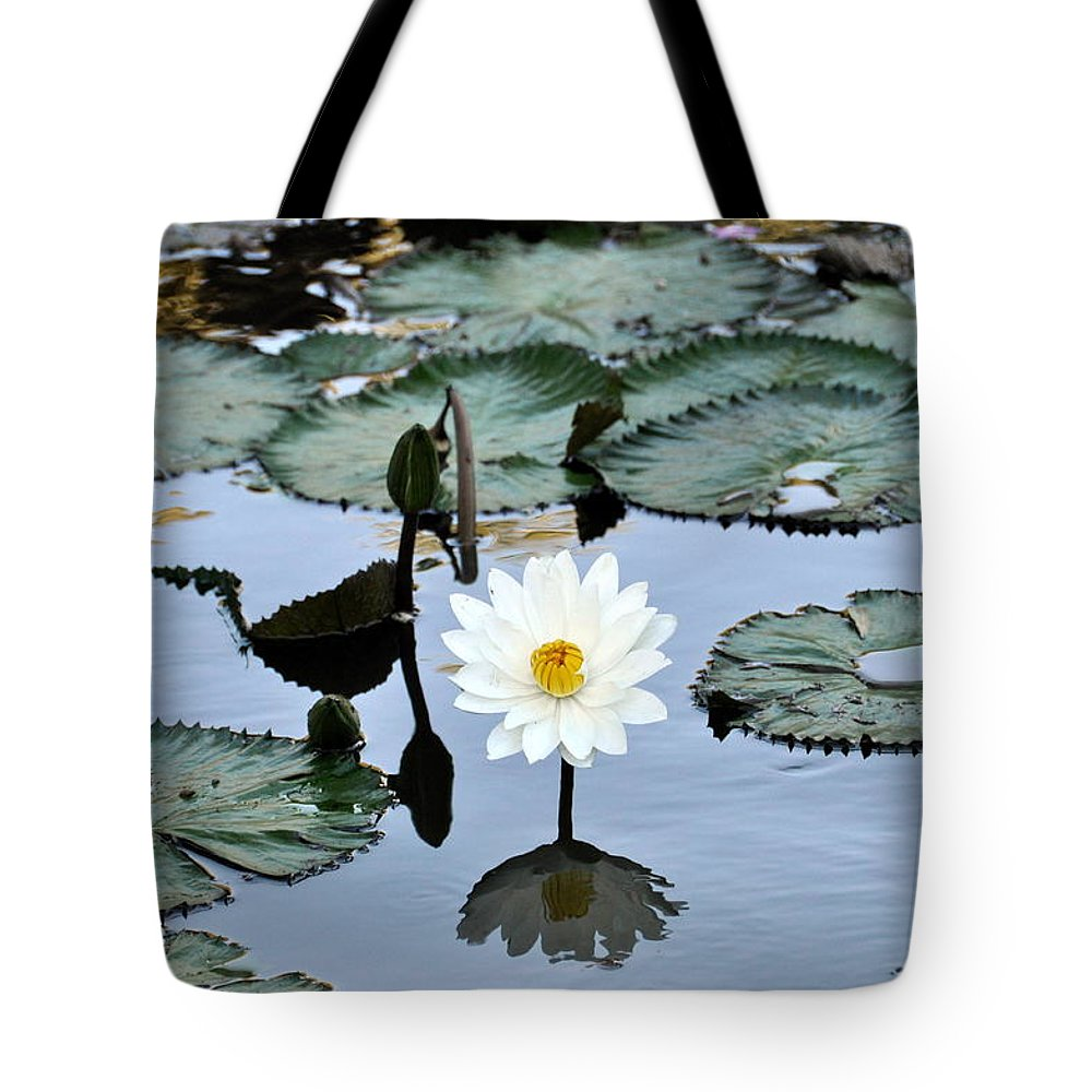 Fresh Water Pond Tote Bag featuring the photograph #night Blooming Water Lily by Cornelia DeDona