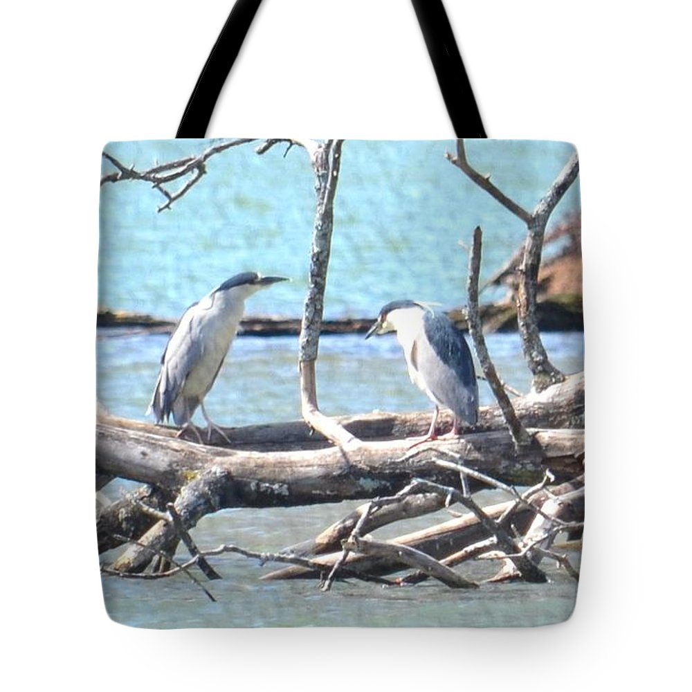 Night Herons Tote Bag featuring the photograph Night Herons by Maria Urso