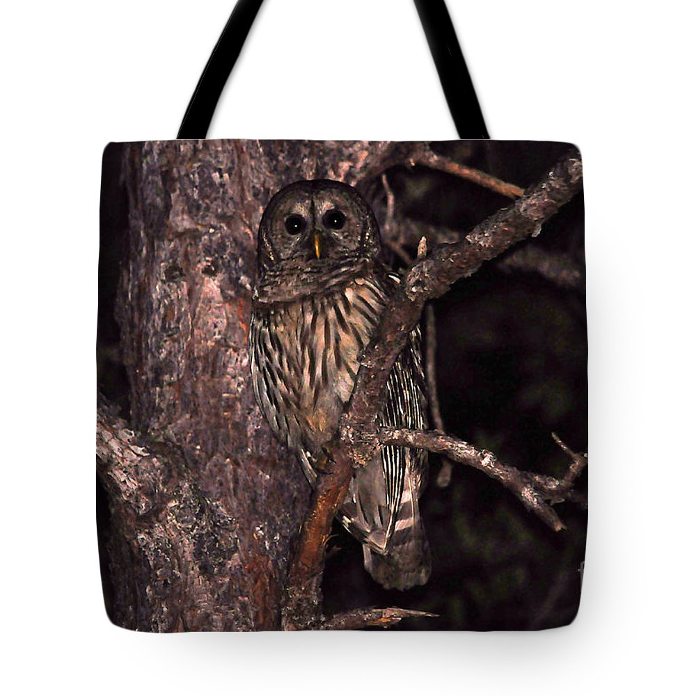 Owl Tote Bag featuring the photograph Night Owl by Al Powell Photography USA