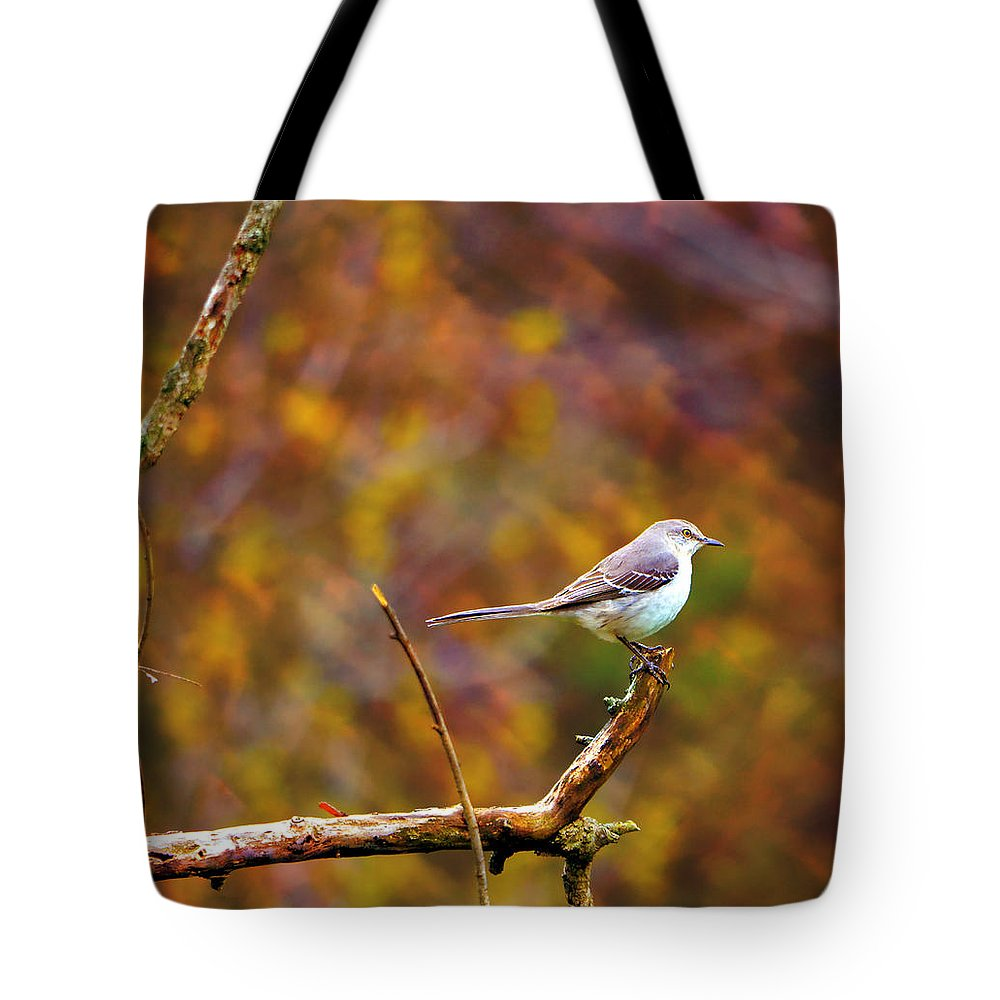 Bird Tote Bag featuring the photograph Northern Mockingbird by Deena Stoddard