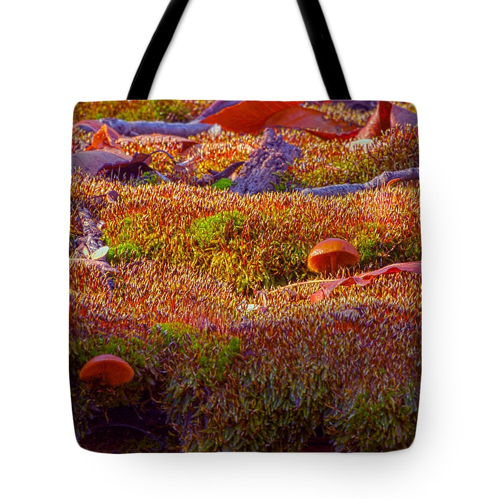 Cabin Photographs Tote Bag featuring the photograph Not A Rolling Stone by Thomas Sellberg