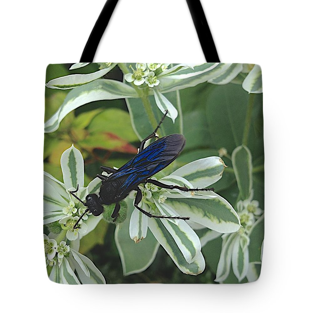Blue Insect Tote Bag featuring the photograph Not Yet by Joseph Yarbrough