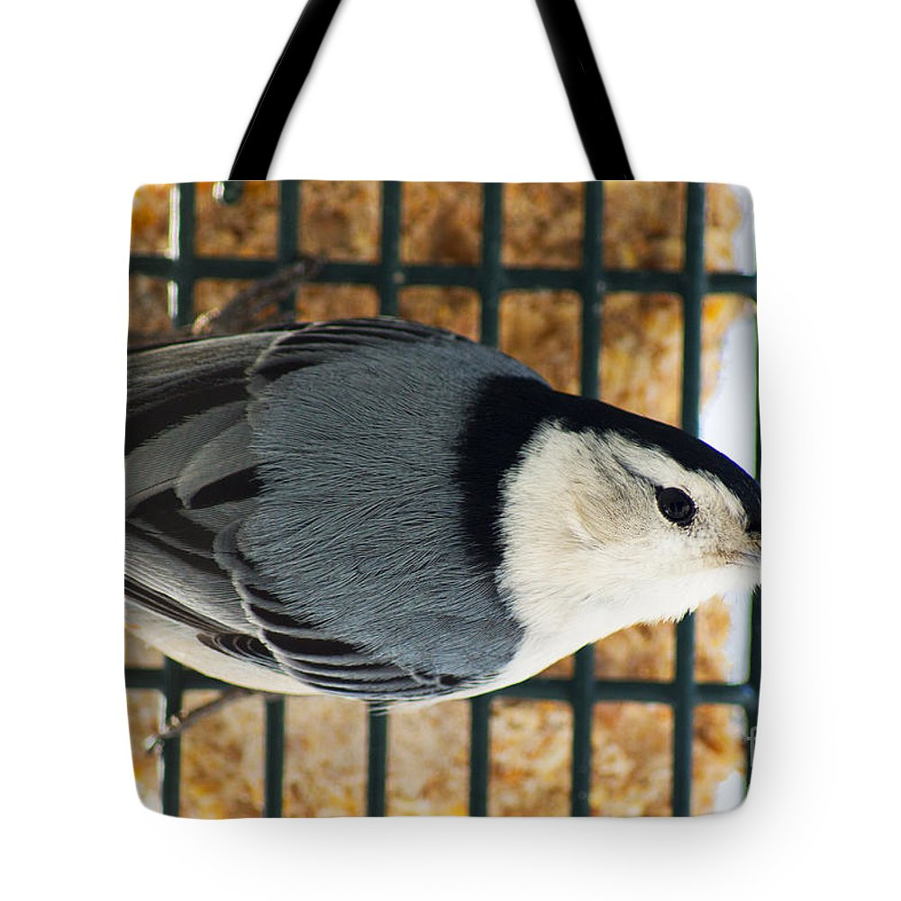 White Tote Bag featuring the photograph Nuthatch by Joe Geraci