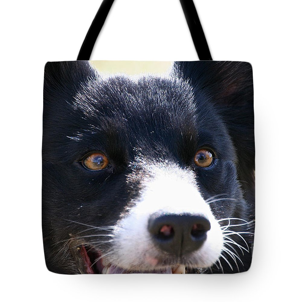 Dog Tote Bag featuring the photograph O Happy Day by Susan Herber