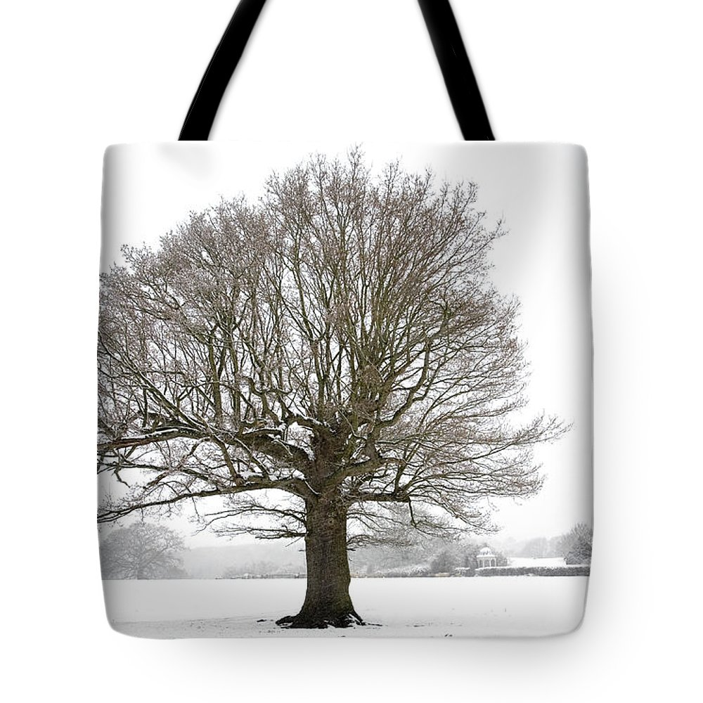 Oak Tree And Farm House Tote Bag featuring the photograph Oak Tree And Farm House by Ben Bassey