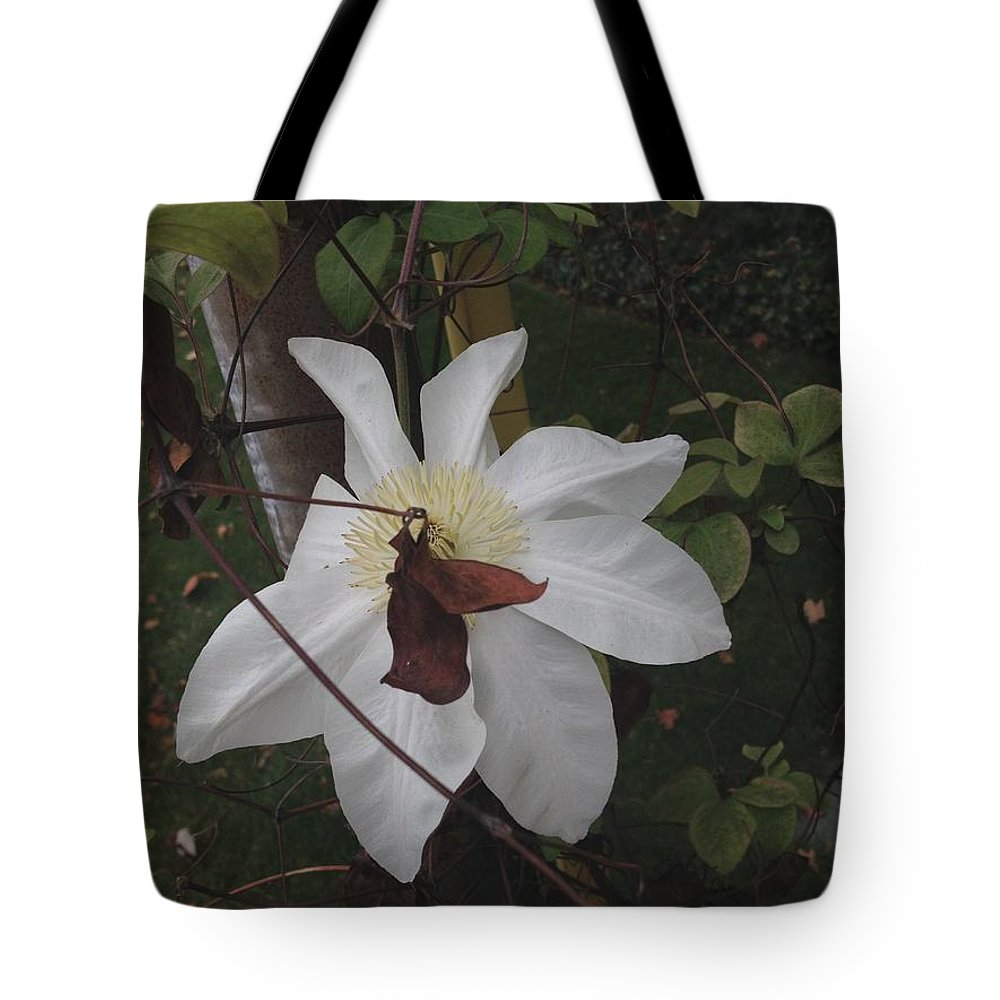 Fall Tote Bag featuring the photograph Obscured by Joseph Yarbrough