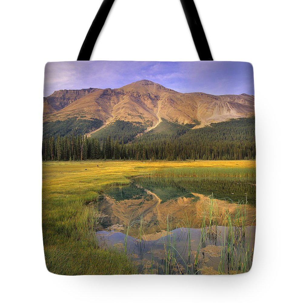 Alberta Tote Bag featuring the photograph Observation Peak And Coniferous Forest by Tim Fitzharris