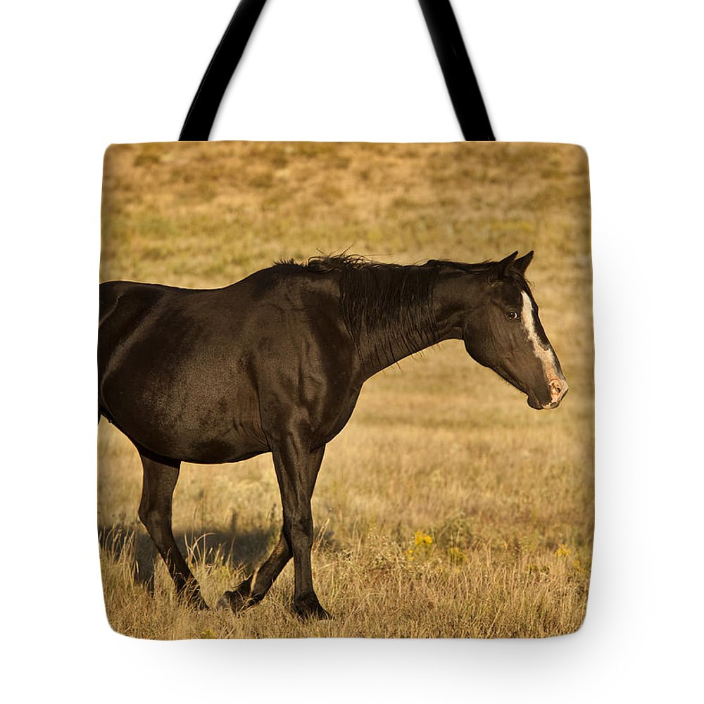 Horse Tote Bag featuring the photograph Obsidian by Jack Milchanowski