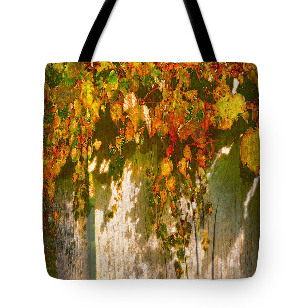 Fall Tote Bag featuring the photograph October Colors by John Anderson